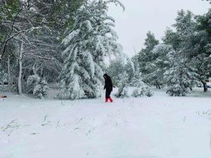 μπακοδημου χιόνι