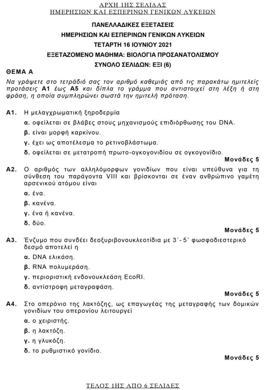 Πανελλαδικές 2021: Τα θέματα που «έπεσαν» σε Αρχαία, Μαθηματικά, Βιολογία